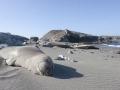 San Benitos Islands_30.jpg