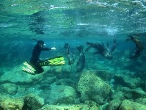 snorkeling_la_paz